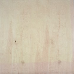 1.5mm Birch Plywood - interior glue line